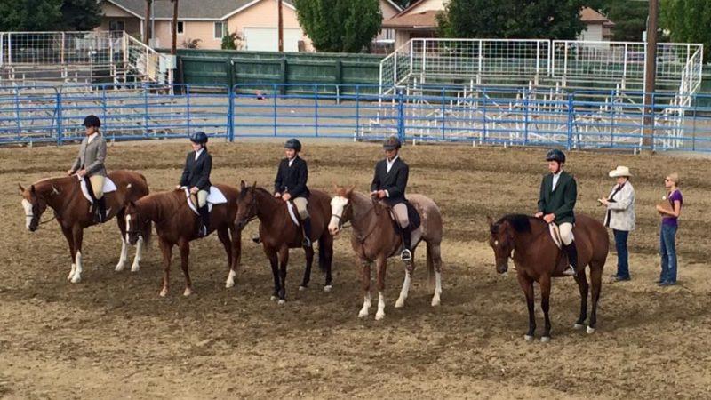 WACKY RIBBON OPEN HORSE SHOW